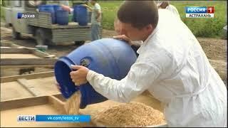 В Астрахани вынесен приговор по уголовному делу в отношении заместителя главного бухгалтера ВНИИОБ