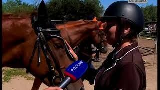 Соревнования по конному спорту в Благовещенске отличились возросшей конкуренцией