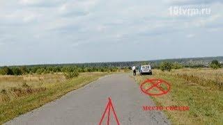 ДТП в Ельниковском районе