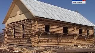 В Костромской области полным ходом идёт ревизия лесов