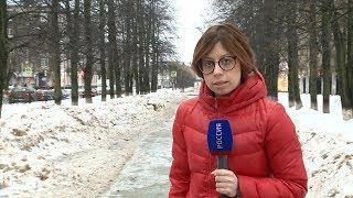 События Череповца: визит полпреда, немецкая делегация, педагогический дебют