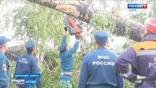 В сёлах Алтайского края введён режим ЧС после урагана