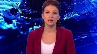 Лось стал причиной ДТП в Ярославской области