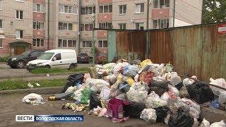Свалки во дворах: куда пропадают мусорные контейнеры?