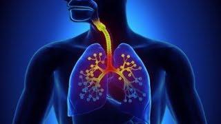 Здоровый интерес 27 марта 2018 Туберкулёз