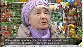 Опасное вторжение  Сорняки находят в семенах овощей по всей Иркутской области  Как спасти огород
