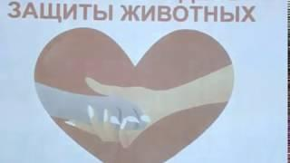 В Березовском стартовала акция «Твори добро»