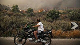 Как Греция справляется с последствиями крупнейших лесных пожаров десятилетия