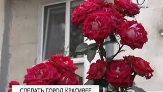 В Белгороде принимают заявки на конкурс благоустройства