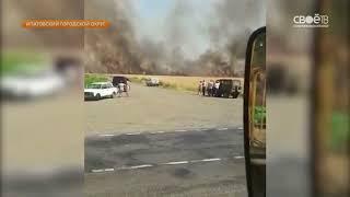 50 гектаров пшеницы сгорело в Ипатовском городском округе