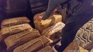 Ответы на главные вопросы о «кокаиновом деле». Расследование RTVI