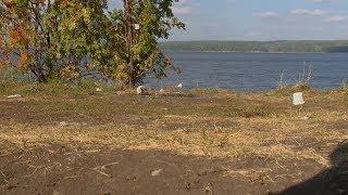 Берега Пензенского водохранилища накрыли навалы мусора