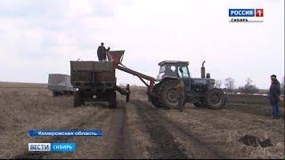 В Кемеровской области началась посевная кампания