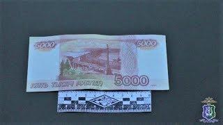 Югорские полицейские задержали фальшивомонетчика