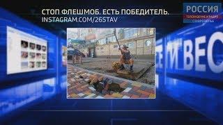 Вести в сети #277. Плиточный провал, чудеса на дороге и ставропольские моржи