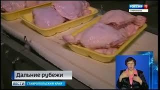 Кубинцев накормят ставропольской курятиной