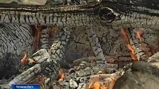На Дону сохраняется самый высокий класс пожароопасности