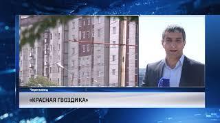 В Череповце стартовала акция «Красная гвоздика»