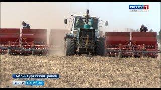 Погода на руку земледельцам - посевная в Марий Эл догоняет сроки - Вести Марий Эл
