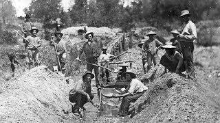 Золото Сочи: в городском музее истории открылась крупная археологическая выставка