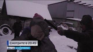 Двойное убийство в Кармаскалинском районе: репортаж «Вестей»