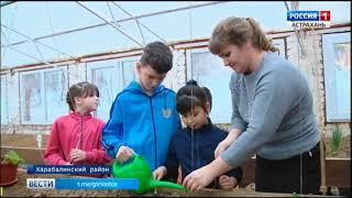 В социально-реабилитационном центре в селе Сасыколи воспитывают будущих агрономов