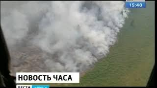 33 500 га горящей тайги в регионе решили не тушить