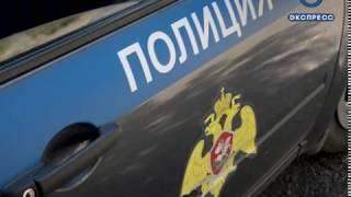 В Пензе собака спасла женщину от нападения незнакомца