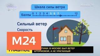 В Москве был штормовой ветер, а не ураганный – синоптики - Москва 24