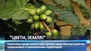 """Очный этап конкурса ландшафтных проектов """"Цвети, Земля!"""" стартовал в Самаре"""