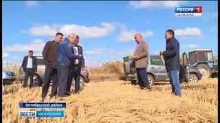 В Октябрьском районе готовятся к уборке риса