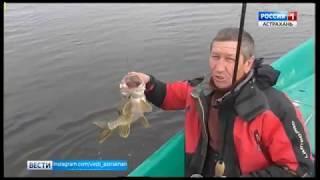 Весенняя рыбалка в поисках астраханской щуки