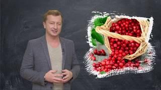 """""""Жизнь.Инструкция по применению"""". Эфир от 18.10.18"""