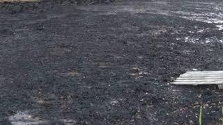 По факту загрязнения водоема в Ярославле возбуждено уголовное дело