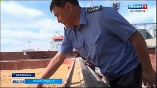 Инспекторы Россельхознадзора взяли в морском порту Астрахани пробы фуражного зерна