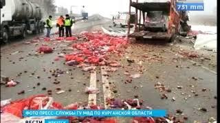 Иркутянин погиб при столкновение двух большегрузов в Курганской области