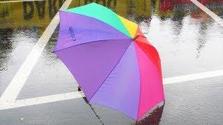 Кому югорское дождливое лето портит самочувствие, а кому помогает в работе?