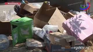 Махачкала утопает в мусоре, Роспотребнадзор называет ситуацию критической