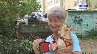 Почему с костромских контейнерных площадок стали реже вывозить мусор?