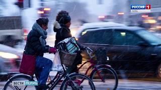 На работу - на велосипеде