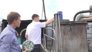 В Волгограде уничтожили партию санкционного сыра