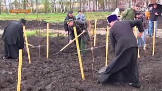 В Михайловске появился новый берёзовый сквер и аллея из трёхсот лип