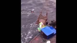 Камчатские рыбаки спасли в Японском море терпящих бедствие корейцев