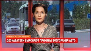 Ноябрьск. Происшествия от 27.08.2018 с Наталией Кузнецовой
