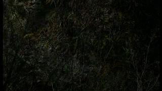 Анадырь ночь 2003(4)г.