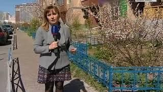 Бухгалтер ТСЖ и 15 миллионов рублей