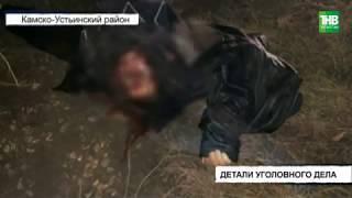 Стали известны подробности убийства в Камско-Устьинском районе | ТНВ