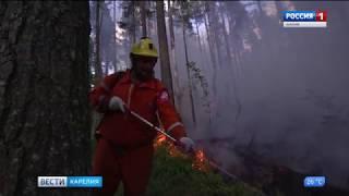 В Лахденпохском районе продолжается тушение лесного пожара
