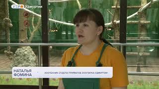 В Зоопарке Удмуртии появились лемуры