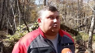 """Волонтеры нашли пластикового """"грибника"""" под Хабаровском"""